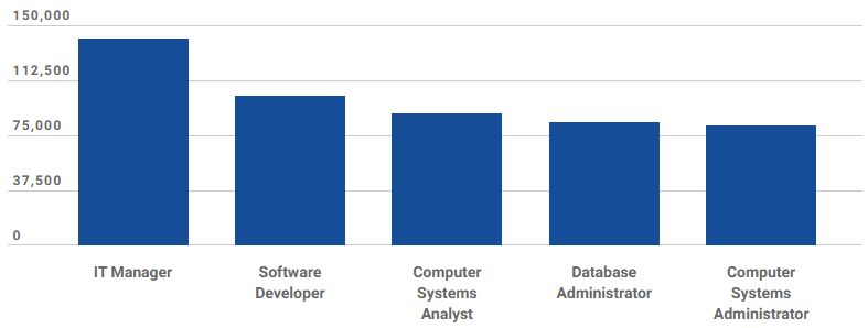 IT manager salary by title